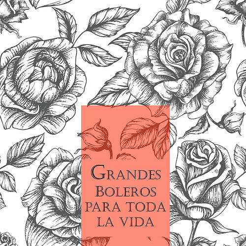 Play & Download Grandes Boleros para Toda una Vida by Various Artists | Napster
