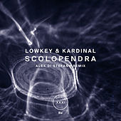 Play & Download Scolopendra by Lowkey | Napster