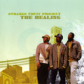 Play & Download The Healing by Strange Fruit Project | Napster