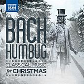 Play & Download Bach-Humbug: Classical Music for Christmas by Various Artists | Napster