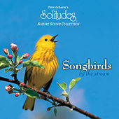 Songbirds by the Stream by Dan Gibson's Solitudes