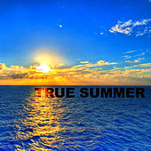 True Summer by Various Artists