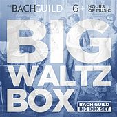 Play & Download Big Waltz Box by Various Artists | Napster