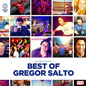 Gregor Salto Best Of by Various Artists