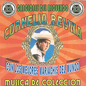 Play & Download 22 Exitos Canciones del Recuerdo by Cornelio Reyna | Napster