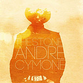 The Stone by André Cymone