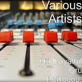 Hridhayathil Oru Pulkoodu. by Various Artists