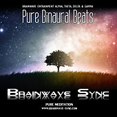 Pure Binaural Beats - Alpha, Theta, Gamma and Delta Brainwave Entrainment - Music for Meditation by Various Artists