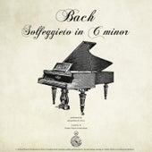 Play & Download Bach: Solfeggietto in C Minor by Alessandro de Lucci | Napster