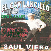Play & Download Reto a la Ley by Saul Viera el Gavilancillo | Napster