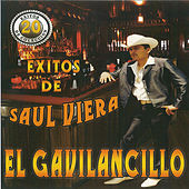 Play & Download 20 Exitos De by Saul Viera el Gavilancillo | Napster