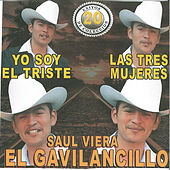 Play & Download 20 Exitos de Coleccion las Tres Mujeres by Saul Viera el Gavilancillo | Napster