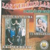 Play & Download 20 Exitos de Coleccion Lo Mejor de Lenis Beatriz by Los Terricolas | Napster