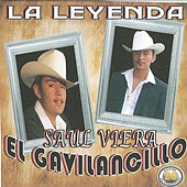 Play & Download 20 Exitos la Leyenda by Saul Viera el Gavilancillo | Napster