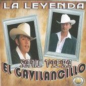20 Exitos la Leyenda by Saul Viera el Gavilancillo