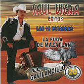 Play & Download 20 Exitos de Coleccion las 12 Ectareas by Saul Viera el Gavilancillo | Napster