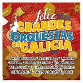 Grandes Orquestas de Galicia. Feliz 2014. by Various Artists