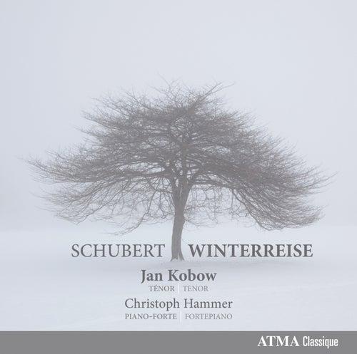Play & Download Schubert: Winterreise by Jan Kobow | Napster