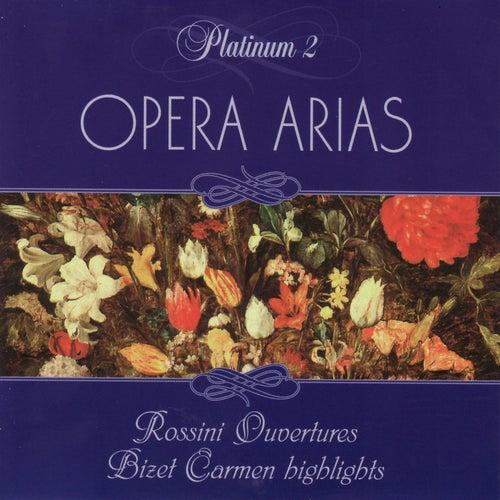 Opera Arias: Rossini, Bizet by Rossini Quartet