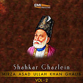 Shahkar Ghazlein, Vol. 2 by Various Artists