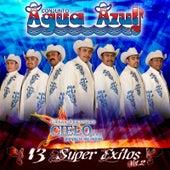 Play & Download 13 Super Exitos, Vol. 2 by Conjunto Agua Azul (1) | Napster