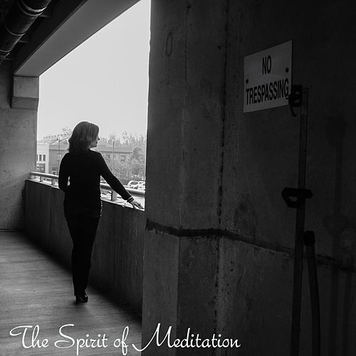 Play & Download Guided Meditation for Releasing the Past by Guided Meditation | Napster