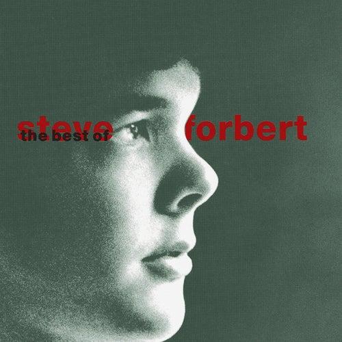 Play & Download The Best Of Steve Forbert: What Kinda Guy? by Steve Forbert | Napster