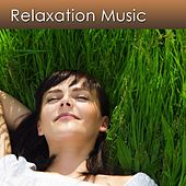Relax Now and Reduce Your Stress with Relaxation Music by Harry Henshaw