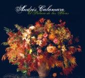 Play & Download El Palacio De Las Flores by Andres Calamaro | Napster