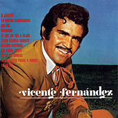 Play & Download Camino Inseguro by Vicente Fernández | Napster
