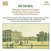 Play & Download Bassoon Concerto/Clarinet Quartet by Johann Nepomuk Hummel | Napster