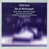 Play & Download Bialas: Aus der Matratzengruft by Various Artists | Napster