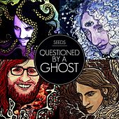 Play & Download Questioned by a Ghost by The Seeds | Napster