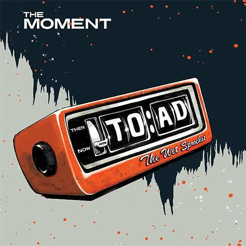 Play & Download The Moment (Radio Edit) by Toad the Wet Sprocket | Napster
