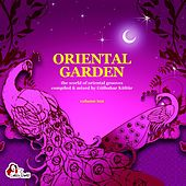 Oriental Garden, Vol. 10 by Various Artists