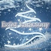 Ezüst Karácsony (Válogatás A Legszebb Karácsonyi Dalokból) by Various Artists