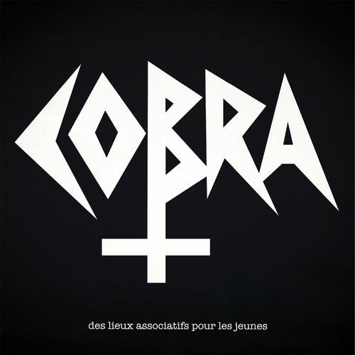 Des lieux associatifs pour les jeunes by Cobra