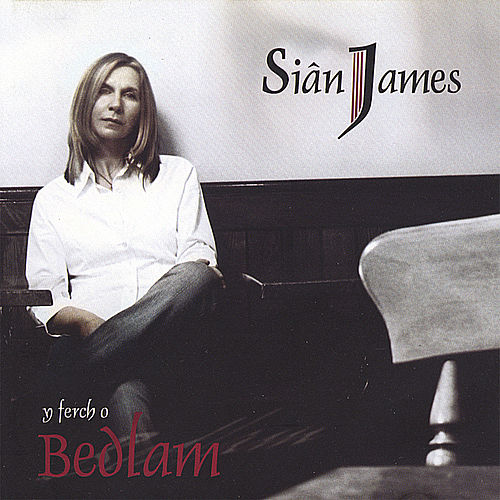 Y Ferch o Bedlam by Siân James