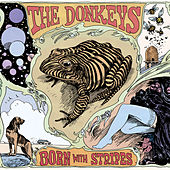 Play & Download Born With Stripes by The Donkeys | Napster