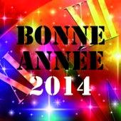 Bonne Année 2014 (Nouvel an ch'ti & dance réussi) by Various Artists