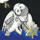 Play & Download Magnolia Electric Co. (10th Anniversary Deluxe Edition) by Songs: Ohia | Napster