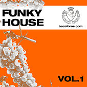 Funky House Vol.1 by Various Artists