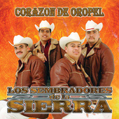 Play & Download Corazón De Oropel by Los Sembradores De La Sierra | Napster