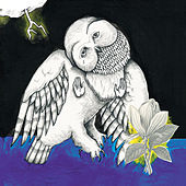 The Magnolia Electric Co. by Songs: Ohia