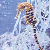 Play & Download Dreams by Taken By Trees | Napster