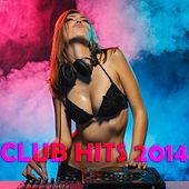 Club Hits 2014 by Various Artists
