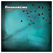Play & Download Liberi by Tiromancino | Napster