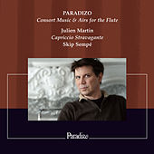 Paradizo, Consort Music & Airs for the Flute von Various Artists