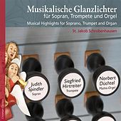 Play & Download Musikalische Glanzlichter für Sopran, Trompete und Orgel by Various Artists | Napster