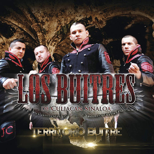 Play & Download Territorio Buitre by Los Buitres De Culiacán Sinaloa | Napster